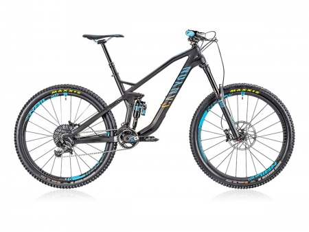 Canyon Strive CF 9.0 Race
